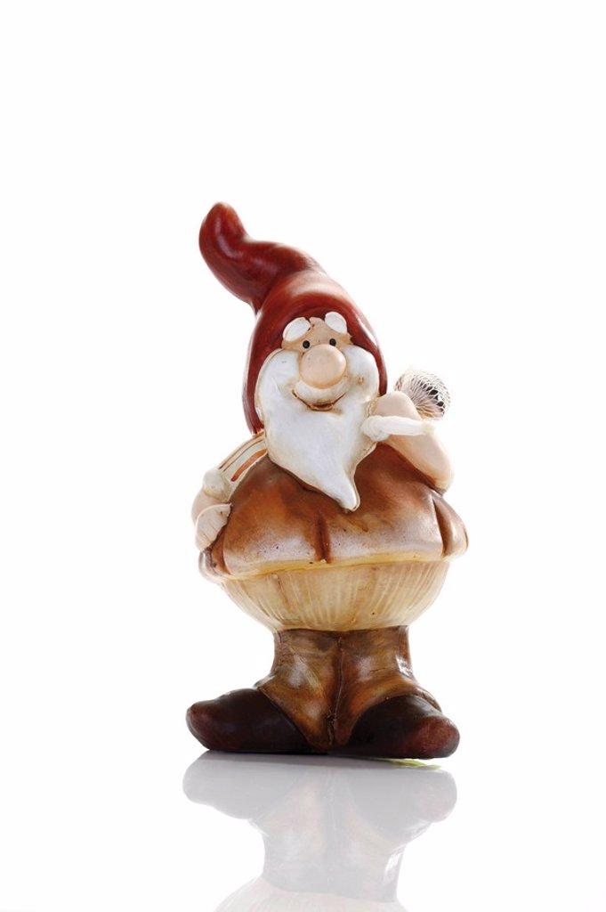 Stock Photo: 1848R-348520 Garden gnome