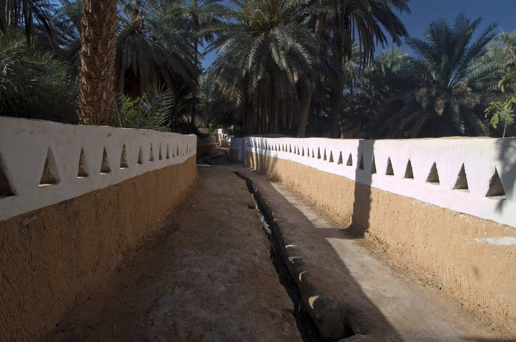 Stock Photo: 1848R-350334 Palm garden at Ghadames, Ghadamis