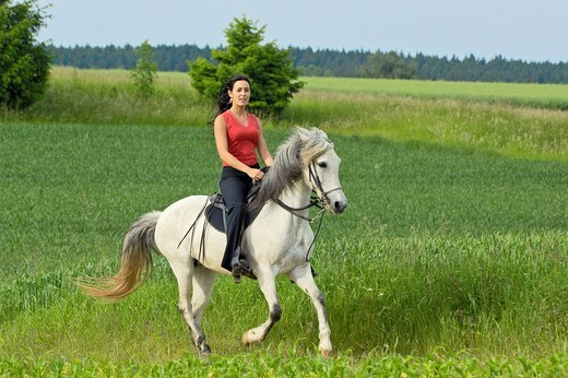 Stock Photo: 1848R-351845 Young lady riding on a Paso Fino Horse