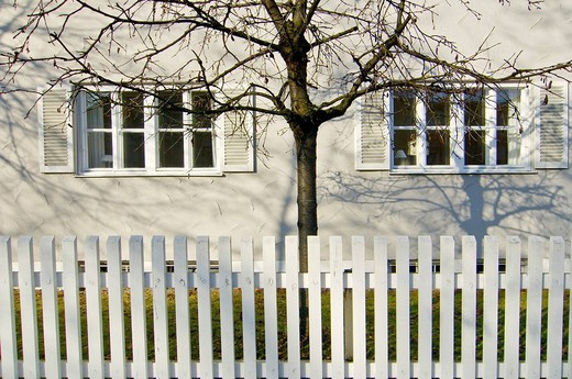 White fence and tree, Munich-Harlaching : Stock Photo