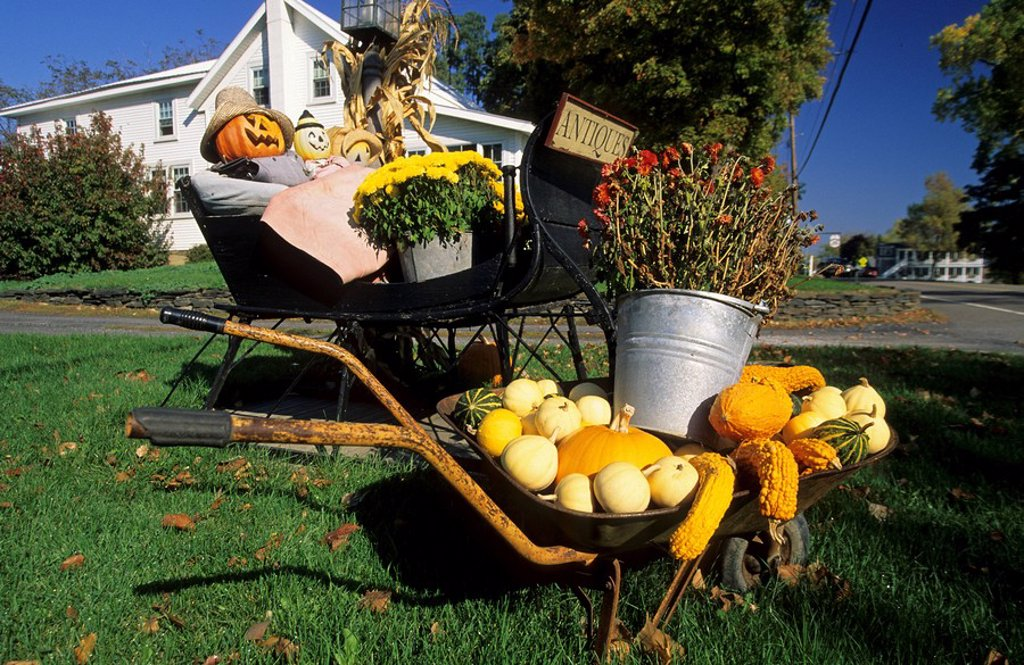 Typical american garden decoration in fall, Vermont, USA : Stock Photo