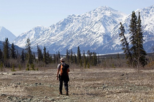 Hiking along Slims River Valley, Kaskawulsh Glacier behind, Kluane National Park, Yukon Territory, Canada : Stock Photo