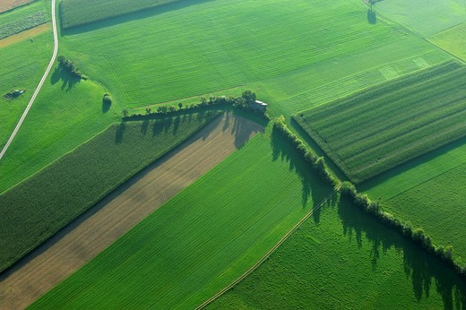 Stock Photo: 1848R-356176 Farmland from the air in the Lucerne Lake Valley, Hochdorf, Switzerland, Europe