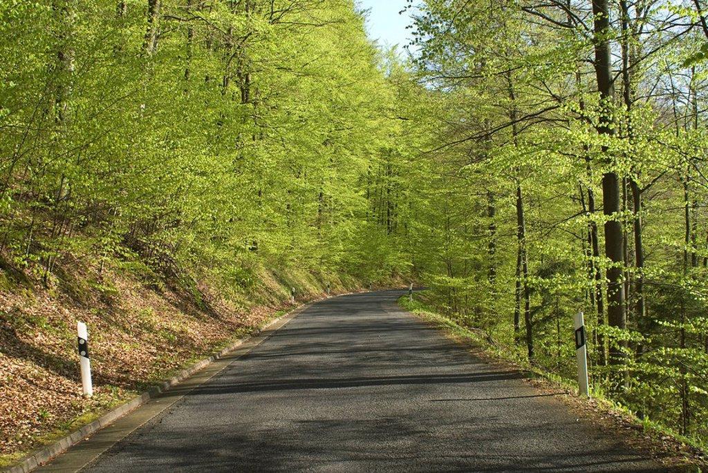 Narrow lane through the Hassberge Mountains, Lower Franconia, Bavaria, Germany, Europe : Stock Photo