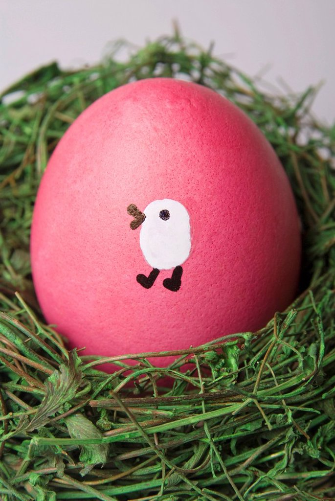 Painted Easter egg in a nest : Stock Photo