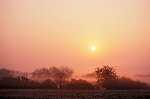 Early morning mood in a valley meadow with haze and rising sunball : Stock Photo