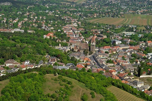 The town of Perchtoldsdorf near Vienna seen from an aeroplane Lower Austria : Stock Photo