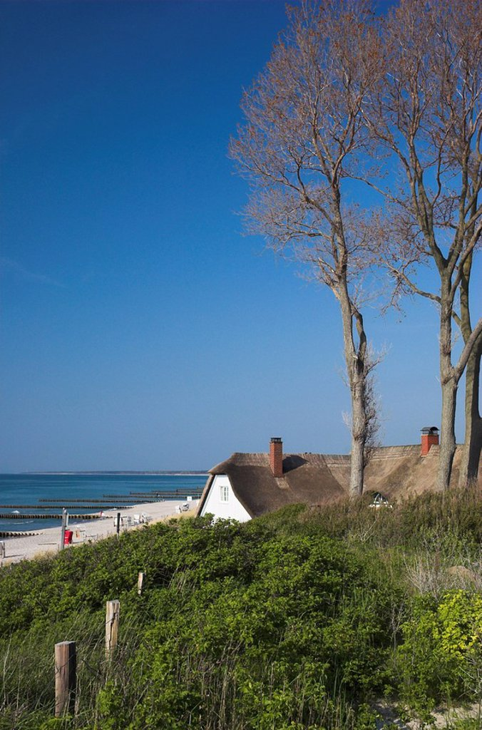 Old house with a thatched roof at the beach at Ahrenshoop Darss Germany : Stock Photo