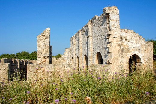 Stock Photo: 1848R-365737 Ruin of a church in a field Karpaz Peninsula North Cyprus