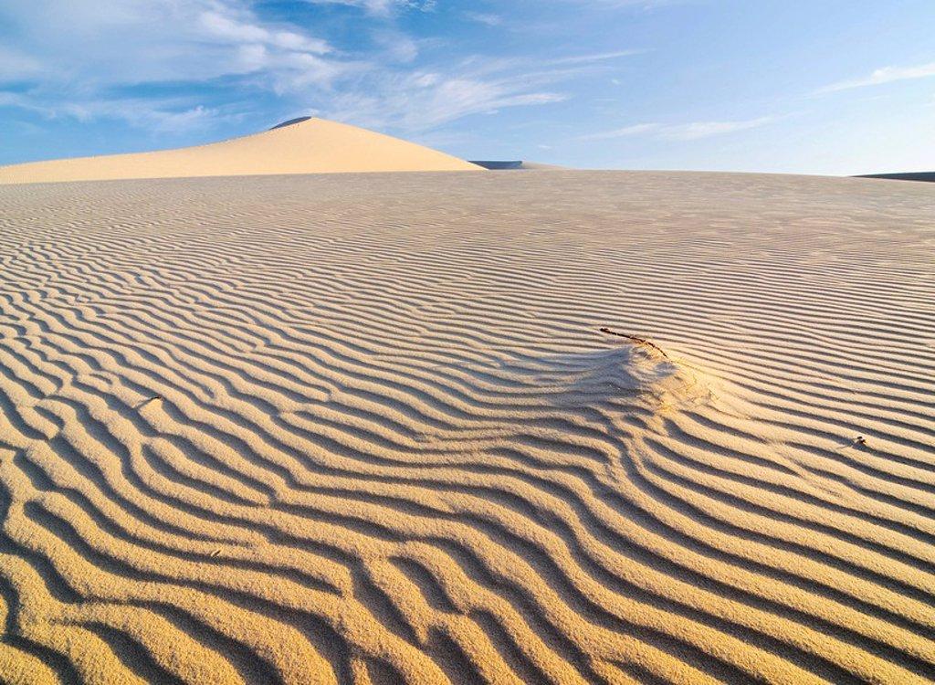 Stock Photo: 1848R-366649 Desert landscape and White Sand Dune, Bau Ba Vietnamese Sahara, Bao Trang, White Lake, Vietnam, Asia