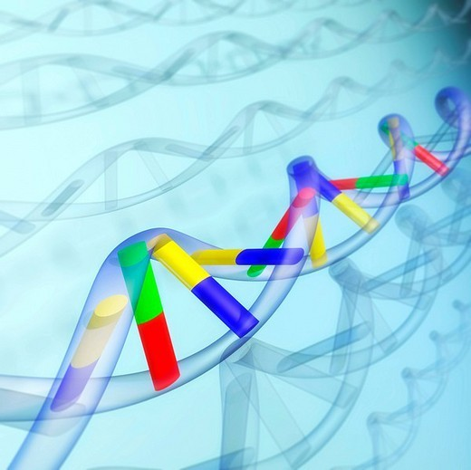Stock Photo: 1848R-368737 DNA sequence, abstract