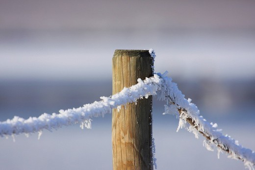 Stock Photo: 1848R-370254 Frost-covered wooden post