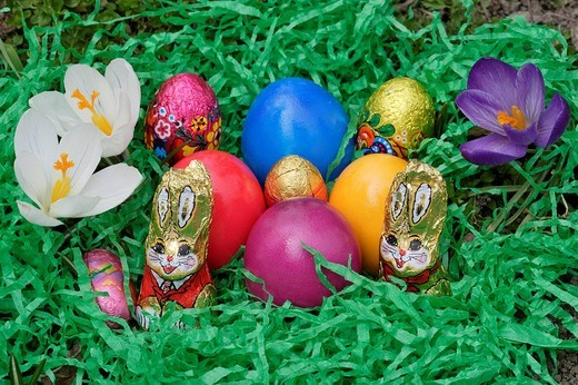 Stock Photo: 1848R-371101 An easter nest with eggs and chocolate rabbits and crocus