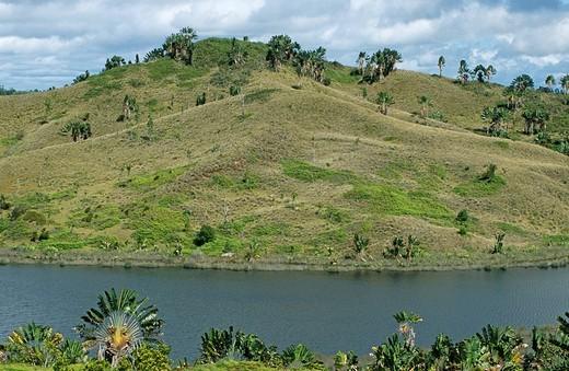 Deforested region, Madagascar : Stock Photo