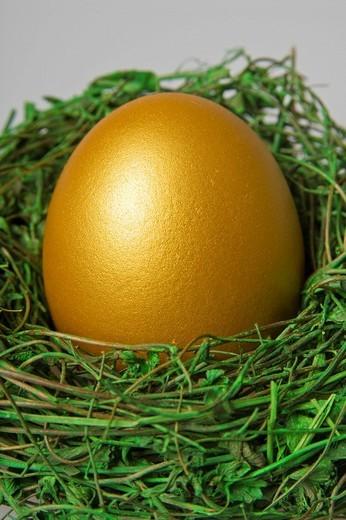 Stock Photo: 1848R-374503 Golden easter egg in a nest