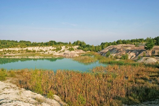Clay pit with a lake and reed in the foreground, Oberlausitz, Saxony, Germany : Stock Photo