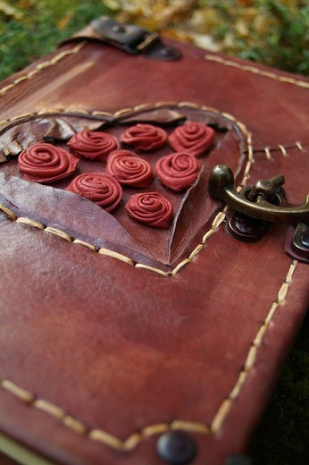 Stock Photo: 1848R-375364 Diary with red leather cover, lock and ornamentation