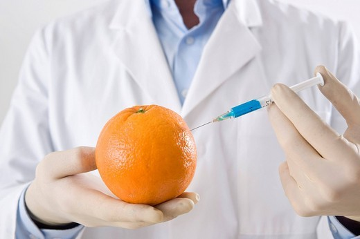 Stock Photo: 1848R-376859 Man in a laboratory injecting liquid into an orange