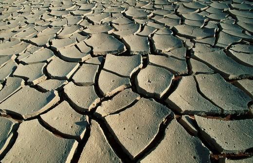 Stock Photo: 1848R-378923 Dried Earth, Namib Naukluft Park, Sossusvlei, Namib Desert, Namibia
