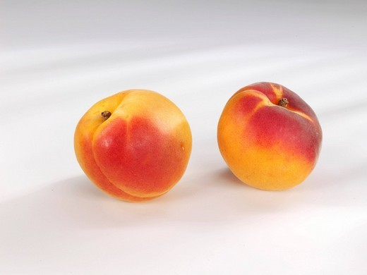 Two Apricots Prunus armeniaca : Stock Photo