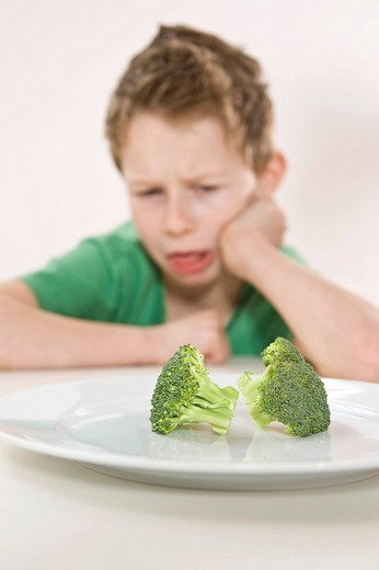 Stock Photo: 1848R-380932 Boy sitting in front of a plate of broccoli with a disgusted look on his face