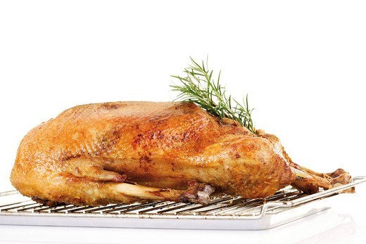 Roast goose on a grill : Stock Photo