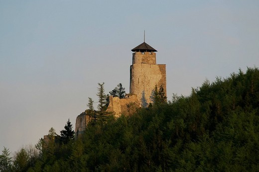 The tower of the castle ruin Araburg near village of Kaumberg Lower Austria : Stock Photo
