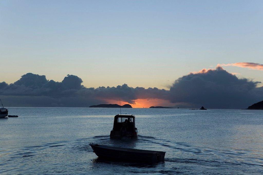 Fishing boat at sunrise, Halfmoon Bay, Steward Island, New Zealand : Stock Photo