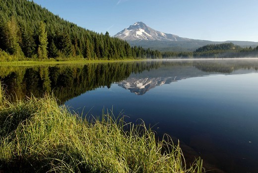 Trillium Lake and the Mount Hood Volcano, Cascade Range, Oregon, USA : Stock Photo
