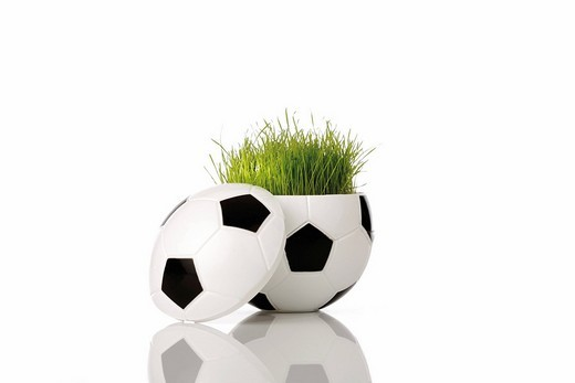 Stock Photo: 1848R-389084 Half a football with original football pitch grass from the World Cup