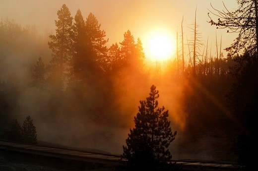 Sunrise and morning fog, Yellowstone National Park, Wyoming, USA, United States of America : Stock Photo