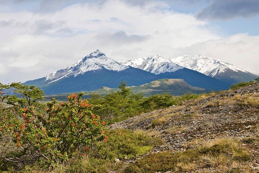 Stock Photo: 1848R-392967 View of the mountain landscape surrounding Cueva del Milodón Natural Monument Mydolon Caves, Patagonia, Chile, South America