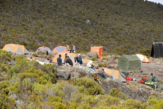 Tents at Horombo Hut Camp Marangu Route Kilimanjaro Tanzania : Stock Photo