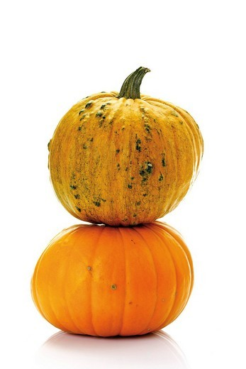 Pumpkins, squashes, marrows Cucurbita : Stock Photo