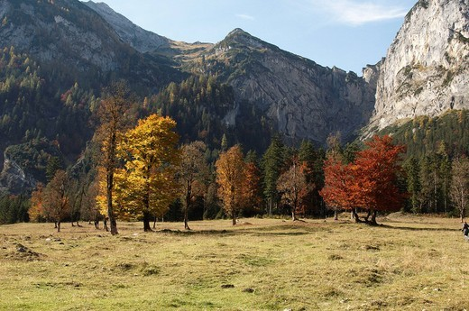 Stock Photo: 1848R-396439 Autumnal mood, mountains in the Grosser Ahornboden in Eng, Risstal Valley, Austria, Europe