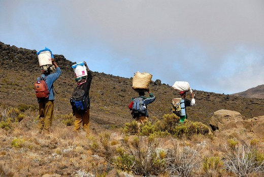 Local porters carry heavy loads Kikelewa Route Kilimanjaro Tanzania : Stock Photo
