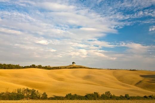 Scenery of the Crete near Pienza Tuscany Italy : Stock Photo