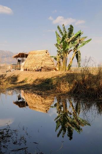 Stock Photo: 1848R-502732 Intha homestead on a canal near Inle Lake, Nyaung Shwe, Shan State, Myanmar, Burma, Southeast Asia