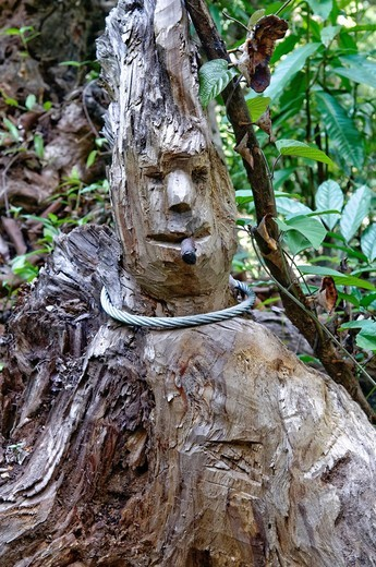 Carved Reggae figure in the jungle, Chiang Mai, Thailand, Asia : Stock Photo