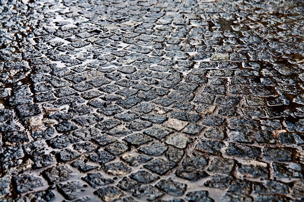 Cobblestones in the rain : Stock Photo