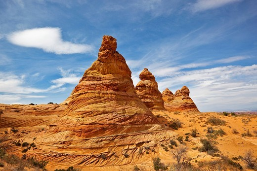 Stock Photo: 1848R-504167 Cottonwood Teepees, Coyote Buttes South, Paria Canyon_Vermilion Cliffs Wilderness, Utah, Arizona, America, United States