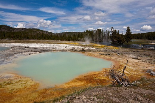 Stock Photo: 1848R-504869 Black Opal Spring, Biscuit Basin, Yellowstone National Park, Wyoming, Idaho, Montana, America, United States