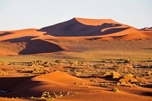 Stock Photo: 1848R-505961 Dunes in the Namib desert, Namibia, Africa
