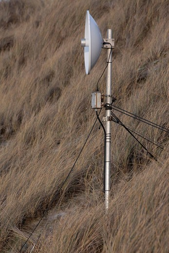 Stock Photo: 1848R-507746 An antenna in the dunes of Westerland, Sylt island, Schleswig_Holstein, Germany, Europe
