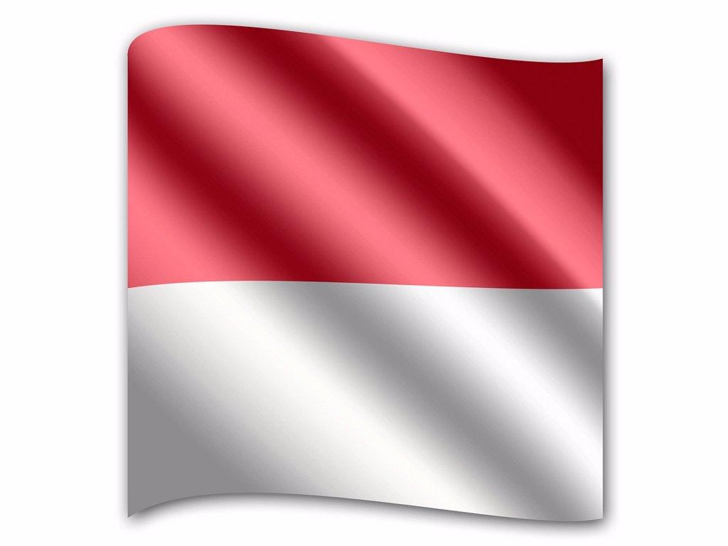 Flag of Monaco : Stock Photo
