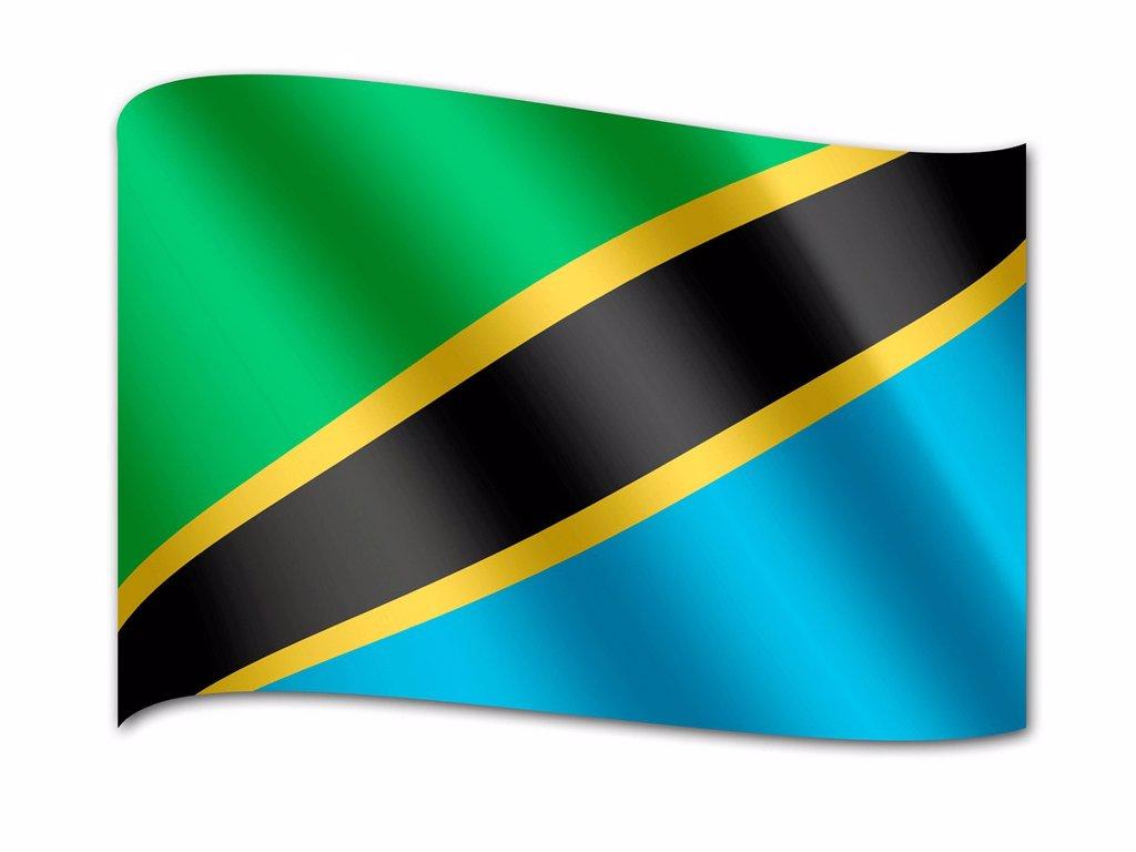 Flag of Tanzania : Stock Photo