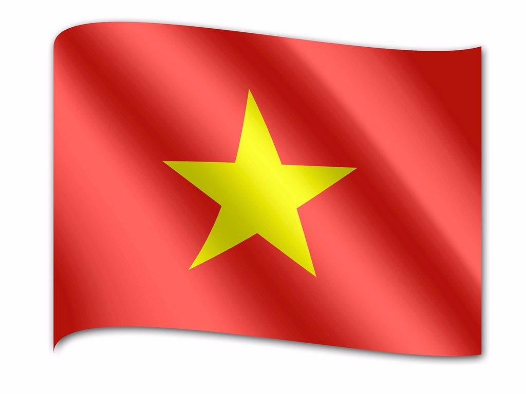 Flag of Vietnam : Stock Photo