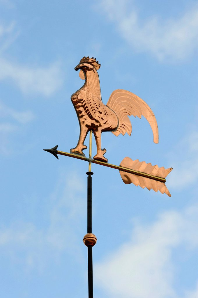 Weathercock, weather vane : Stock Photo