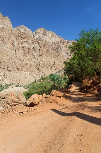 Earth road in Wadi Tiwi, Oman, Middle East : Stock Photo