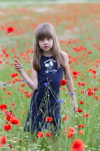 Stock Photo: 1848R-517062 Little girl standing in a poppy field